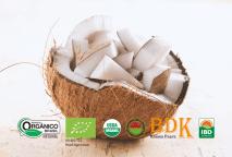 Você sabe o que são alimentos orgânicos?