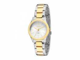 Relógio Technos Elegance Ladies Prata e Dourado Feminino dc07284976